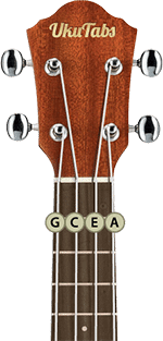ukulele head strings name